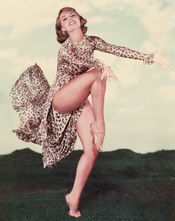 Cyd Charisse, Party Girl (1958)