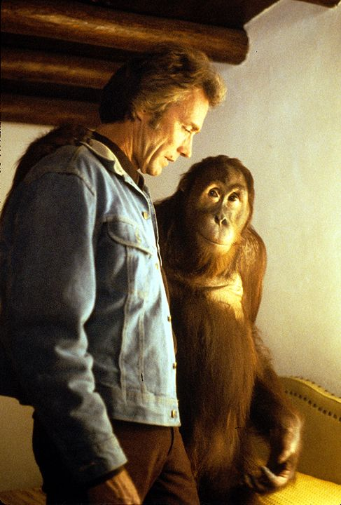 """Clint Eastwood and Manis the Orangutan (""""Clyde""""), Every Which Way But Loose"""
