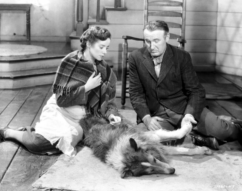 Elsa Lanchester, Pal, and Donald Crisp in Lassie Come Home
