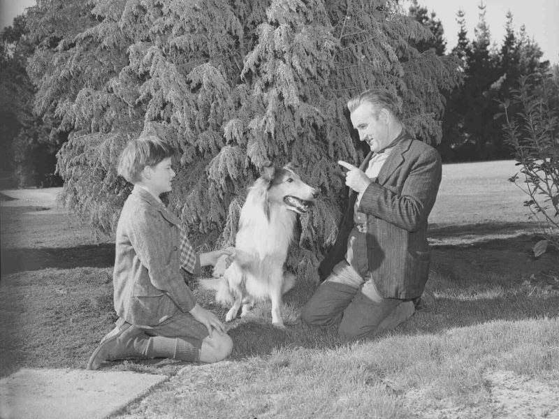 Roddy McDowall and Donald Crisp in Lassie Come Home
